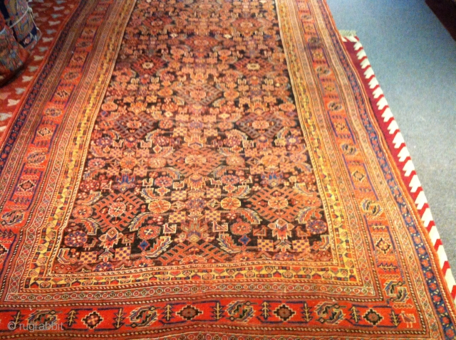 "circa 1880  Persian Bijar   Even wear.  6'5""x 11'6"" no dry rot, no pet stain"