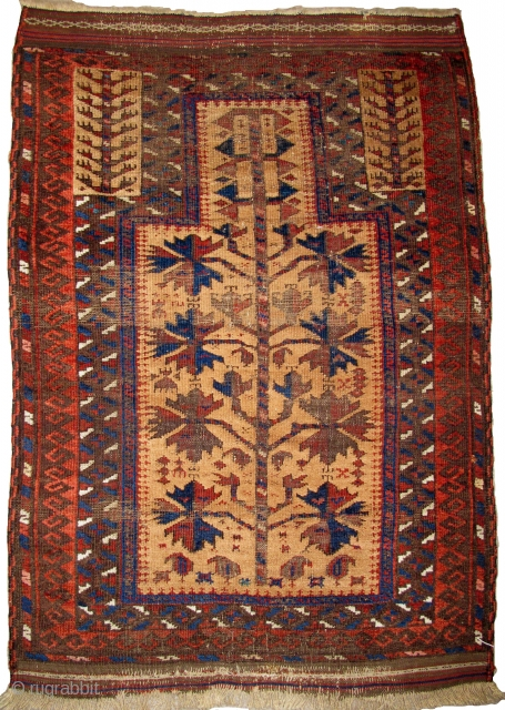 "small Camel Ground Baluch Prayer Rug, elegant drawing and saturated colors. Complete with sides and ends. Probably from Northwest Afghanistan, it is an older one of this type. 2'5""x3'5"""