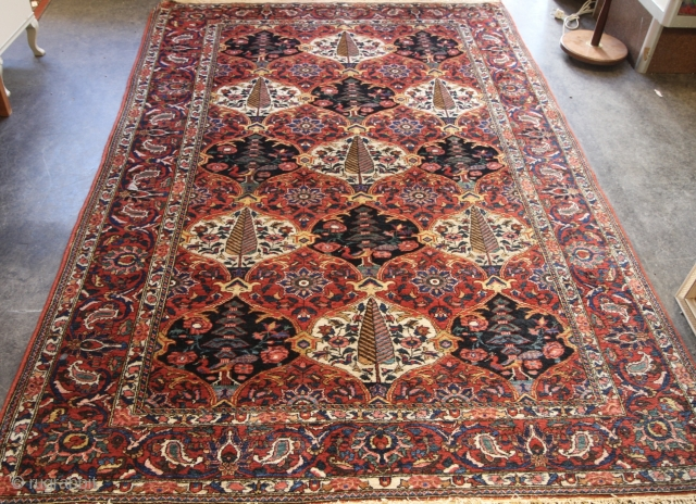 1920's/30's Baktiari Rug Condition Ok. One end needs stopping Size: 213cm x 138cm