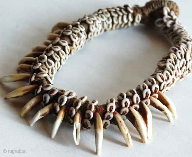 """Papua New Guinea Dog Tooth Neckpiece, purchased in 1980 from James Willis Gallery SF during the Malcolm Kirk """"Man As Art"""" photography Exhibit/Show. 17""""L"""