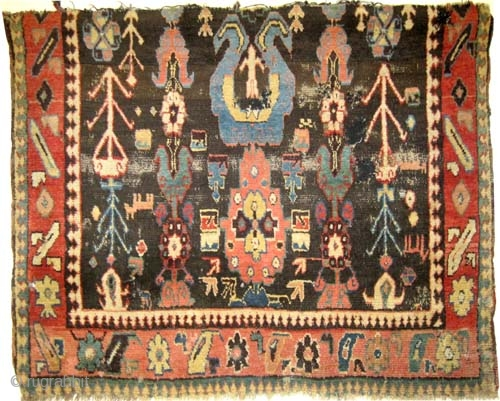 """Fragment Karabag Caucasian antique. Collector's item. Size: 120 x 97 (cm) 3' 11"""" x 3' 2""""  carpet ID: K-3279 high pile, the black color is oxidized, vegetable dyes, the warp and  ..."""