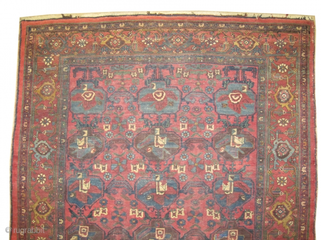 "Bidjar Halvai Persian knotted circa in 1905 antique, collector's item, 206 x 145 (cm) 6' 9"" x 4' 9""  carpet ID: K-57