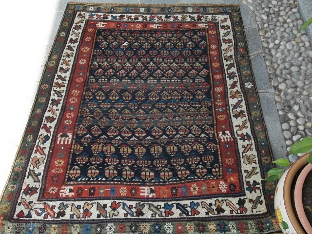 160 x 133 cm ANTIQUE KORDI carpet in very good condition. All natural colors. Wool on wool. Full pile. Greeting from Como !
