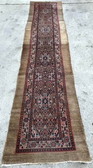 Antique Camel Hamadan Sarab runner in great original shape, no repairs - 3'0 x 13'10 / 92 x 424 cm.