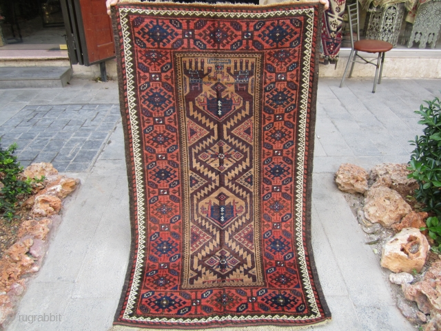Old baluch. Prayer th19 . NO repair and full pile.size 155x90