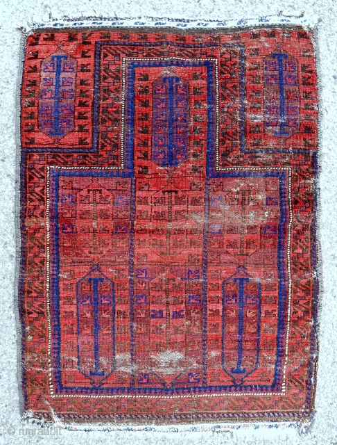 "Unusual Timuri Baluch prayer rug with ""electric"" blue. c. 1870-80."