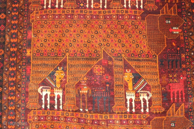 20th c Baluch Meshed district, northeast Iran