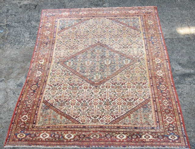 """Great ivory ground Mahal rug in full pile and great condition, size is 10'-3""""x8'-9""""."""