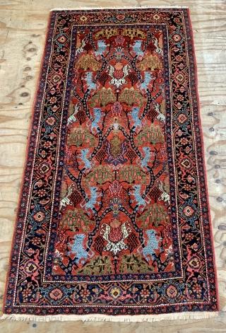 Nice antique bijar lion rug ask for more details
