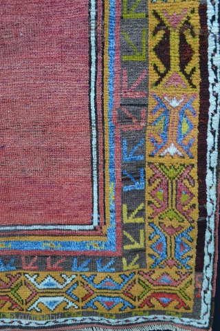 """Konya prayer-rug with stunning red field and golden-yellow mihrab - 1.63 x 1.07m  (5' 4"""" x 3' 6"""") - evenly low pile."""