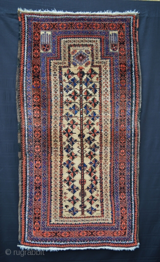 "Camel-ground Baluch prayer-rug with 'tree-of-life' and nice use of electric blue in the borders. In very good overall condition - 1.73 x 0.92m (5' 8"" x 3' 0"")."