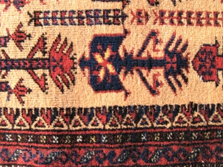 Baluch animaltree prayer rug, soft camel field  Early 20 th.c. Woll on cotton