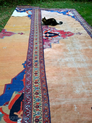 Antique Khorassan carpet, mid 19th, 330x470cm, worn, damaged, cut and shut. Most beautiful colours, alas the back looks better than the front.Amazing shades of peach, apricot and sunset.