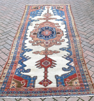 A fine old Persian Malyor Kelleh carpet of unusual and attractive colour palate. Even low pile areas of old but good quality repair, lovely country house look! clean and floor ready. Circa  ...