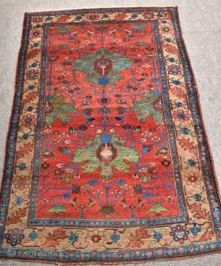 An antique Kurdish rug with beautiful colour. full pile, one small faded repair, hand washed and floor ready. Late 19th century. 189x132cm