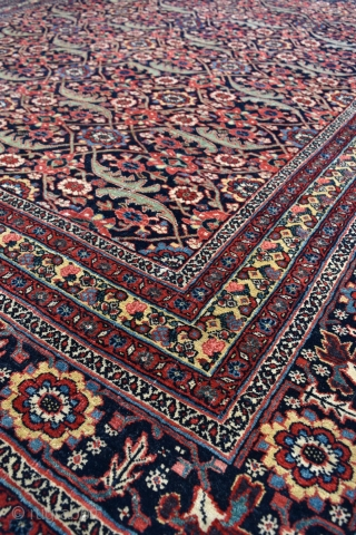 Bijar Kelleh carpet, elegant allover design with a beautiful range of muted natural dyes. This very heavy, all wool carpet pre dates the more common late 19th century Bijar production. It remains in amazing  ...
