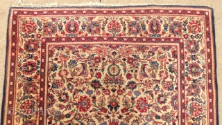 Ivory KASHAN, 