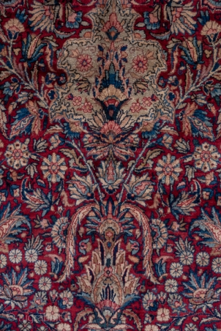 Kerman Carpet  9.9 x 16.11 3.01 x 4.91  The natural scarlet cochineal red field is densely covered by a palmette, long leaf, boteh leaf and escutcheon allover, unidirectional  pattern. A variety of small flowers  ...
