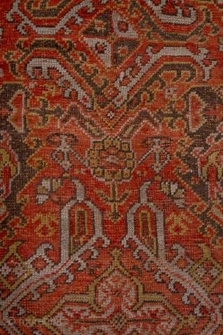 Oushak Carpet