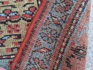 "Beautiful antique Kurdish rug. 3'8"" x 6'11"". Wonderful light blues. Decent pile.  Cheers."