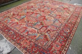 """Very unusual Serapi carpet 9'7"""" x 11'9"""" ca 1880"""