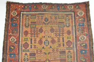 Beautiful and Colorful Early Sistan Area Baluch Rug with All natural dyestuffs Gorgeous open Border  Specialy Rich used yellow from The willow Leaves... Check the Eclectic Drawn see  the symbols and  ...