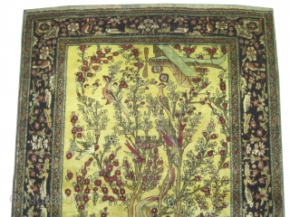 """Kirmanshah Persian knotted circa in 1918 antique, collector's item, 214 x 139 (cm) 7'  x 4' 7""""  carpet ID: K-636 The knots are hand spun lamb wool, the background is soft  ..."""