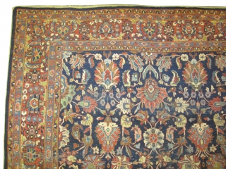 """Ziegler Mahal Persian circa 1905 antique.  Size: 365 x 265 (cm) 12'  x 8' 8""""  carpet ID: P-5829 vegetable dyes, the black color is oxidized, the knots are hand  ..."""