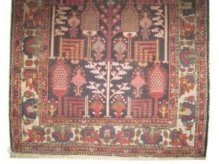 "Baktiar Persian circa 1895 antique.  Size: 205 x 136 (cm) 6' 9"" x 4' 6""  carpet ID: K-4397