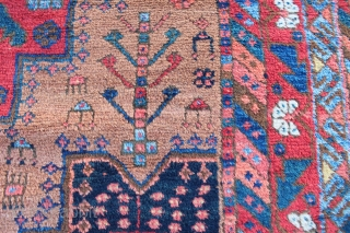 "Antique Afshar rug of the type now referred to as ""Outback Afshar"" after the well known  article in Hali #117. The rug has all the features of this type including many  ..."