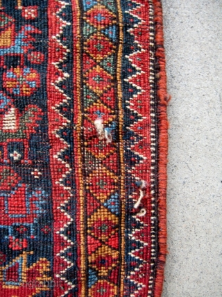 """A 19th C. Khamseh bagface, 21"""" x 21"""", with an attractive and hard to find bird design. All natural dyes and shiny wool. The colors are softer and have a darker cast  ..."""