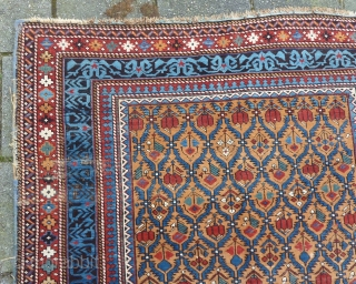 Caucasian Kuba Shirvan, 211 x 131 cms., end 19th c. Woolen warps, cotton wefted. With three localized areas of wear, as seen on the last three pictures. Selvedges needs attention. All natural  ...
