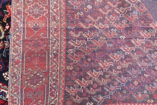 Khamseh Birds Rug wonderful colors and excellent condition full pile all original size 2,00x1,60 cm Circa 1890-1900