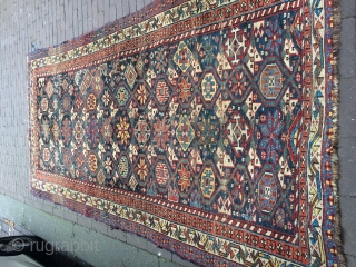 Antique Shiraz, (Lori) 