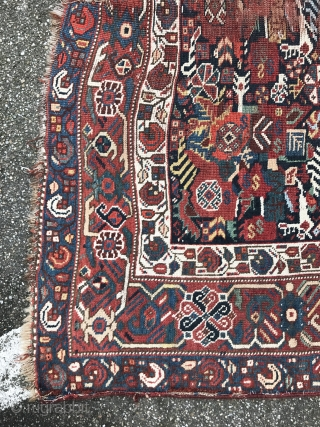 Rare Persian gashgai group rug 190x127cm