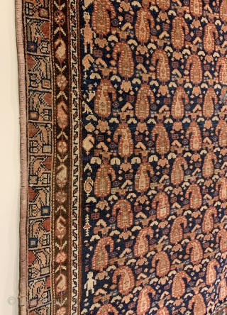 Antique Kurdish Long Rug. Glowing botehs dance to the left and right on a deep indigo blue field. The weaver and family appear on the leftest part of field. Original condition with  ...