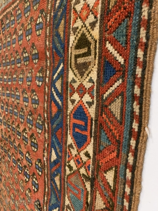 Antique Shahsavan Rug. Late 19th Century. Cerulean blue botehs sit on abrashed field. Unique bird design in border featured prominently on Shirvan Kilims. Original 4 sides. Minor tribal re-piling to field. 10  ...