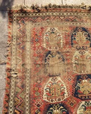 Caucasus Dagestan Sumach 1820 or 1840s size 265x170cm